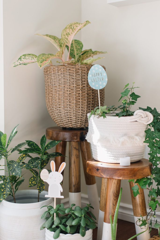 mini Easter egg hunt signs in potted plants