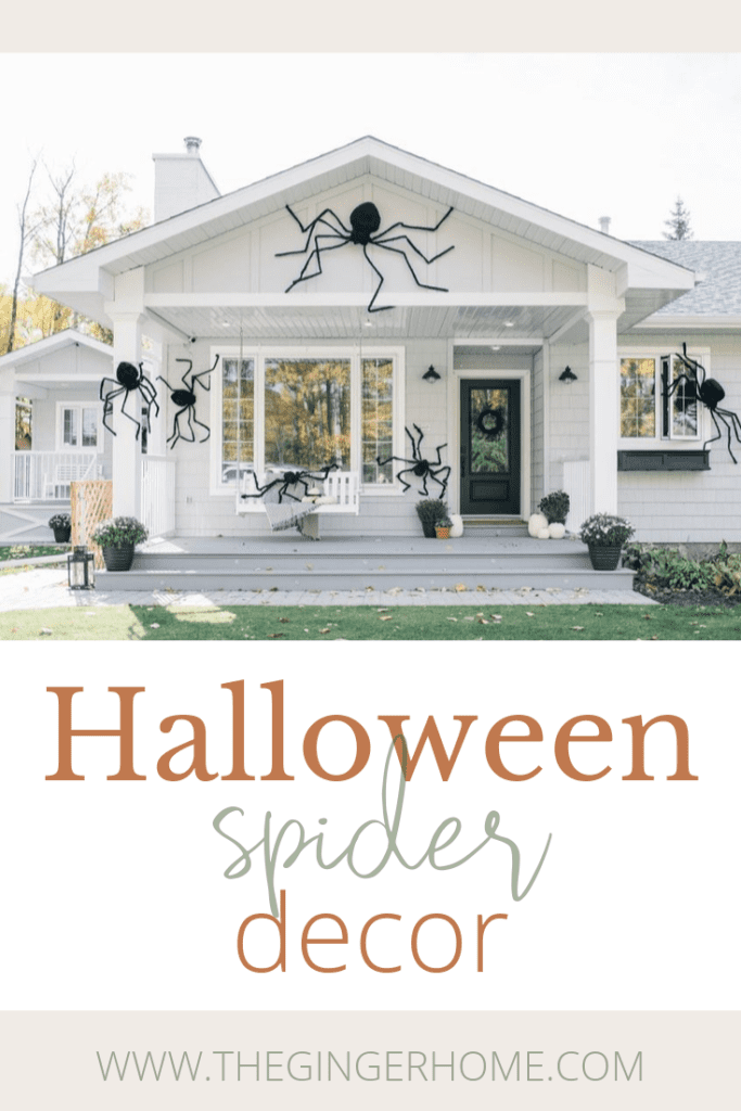Halloween Spider Decor