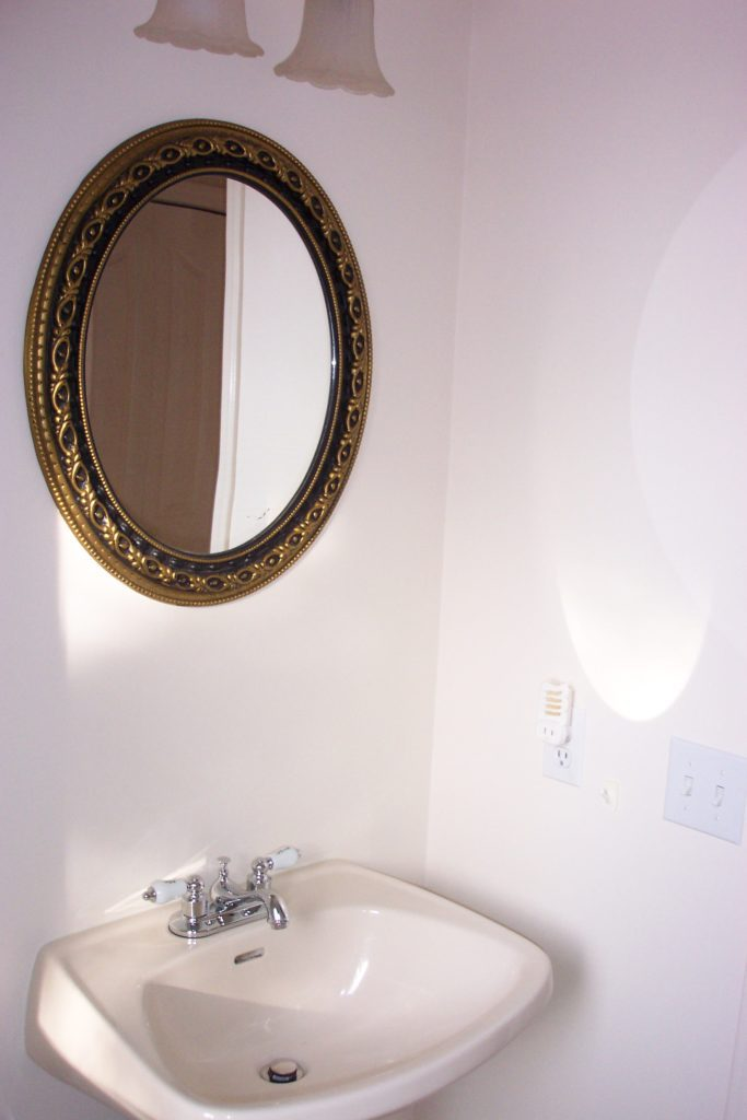 before image of main bathroom