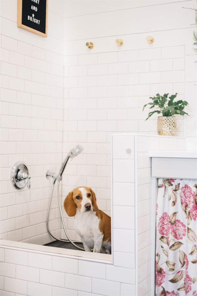 A dog wash is a handy addition to a mudroom