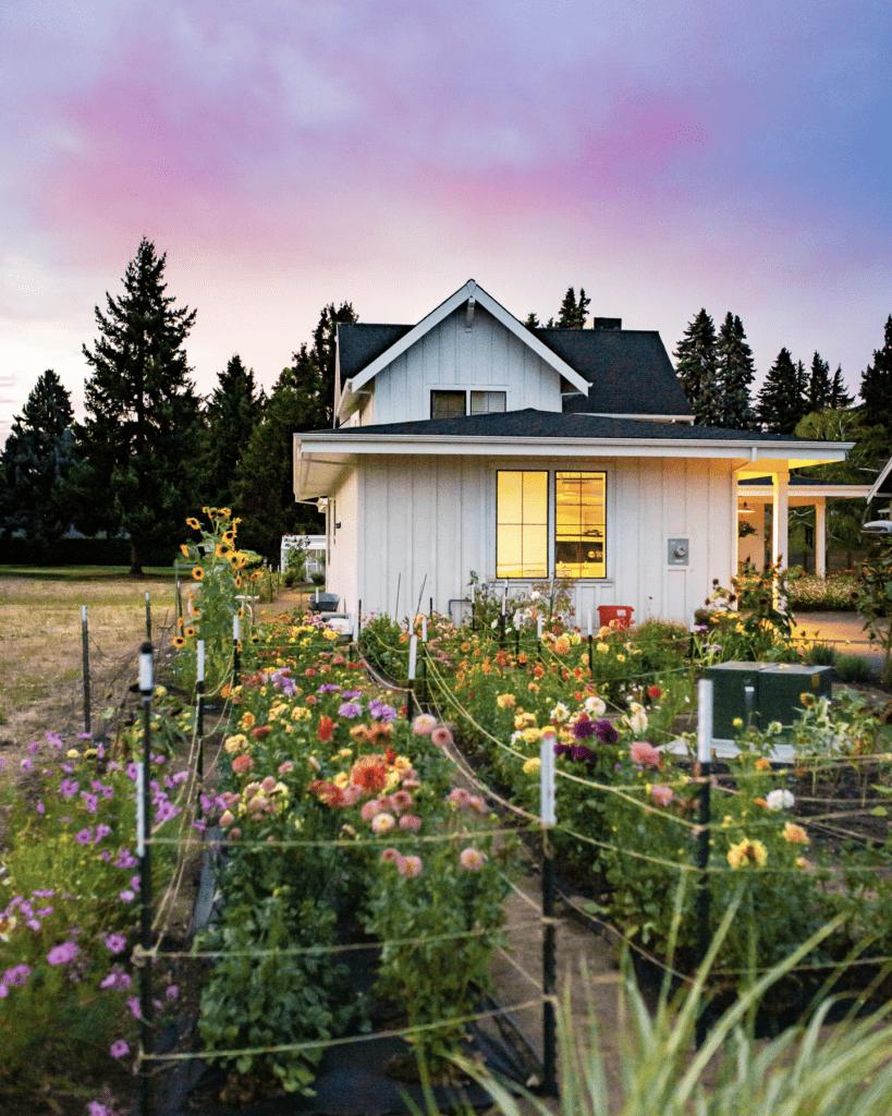 Beautiful cut flower garden in front of white farmhouse