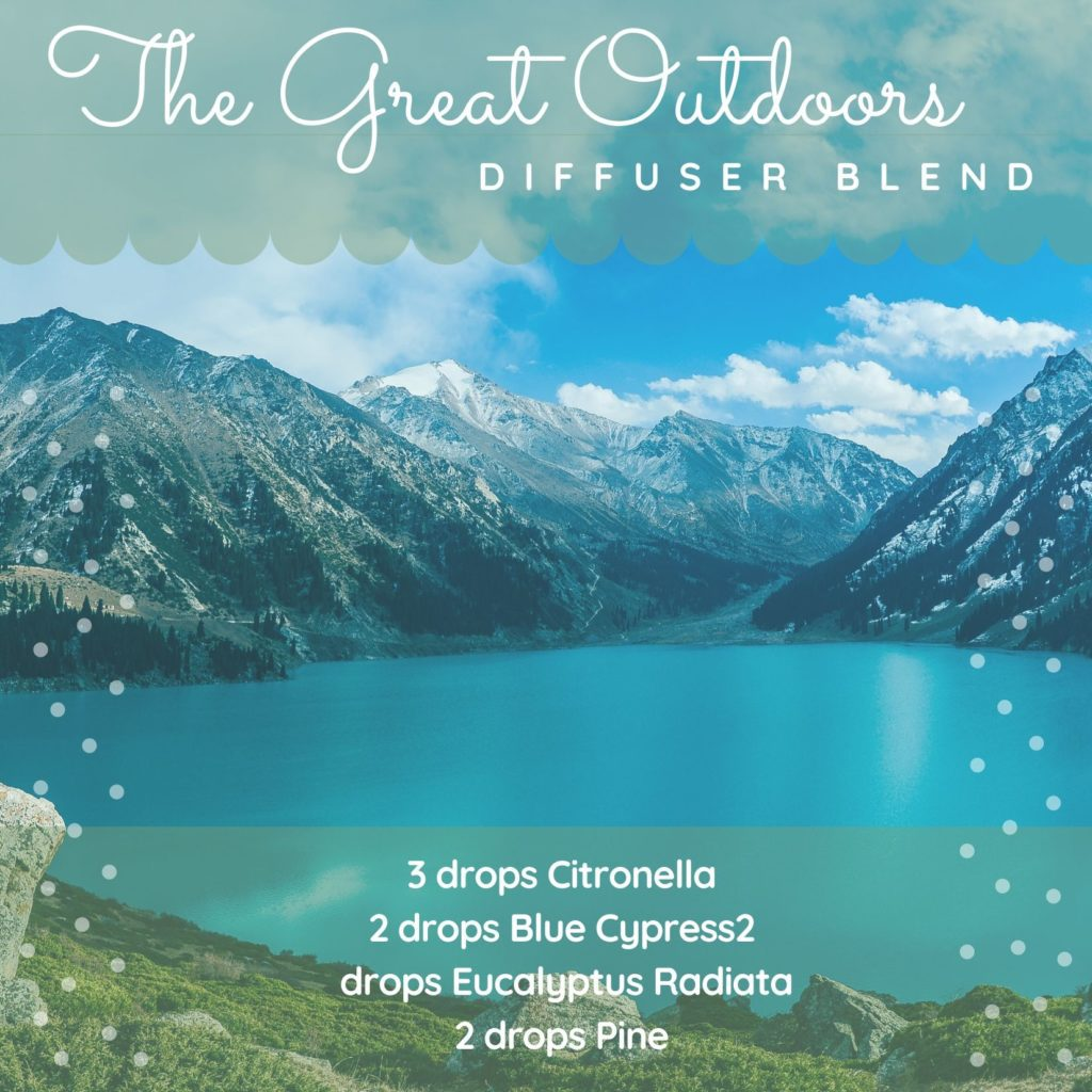 The Great outdoors diffuser blend