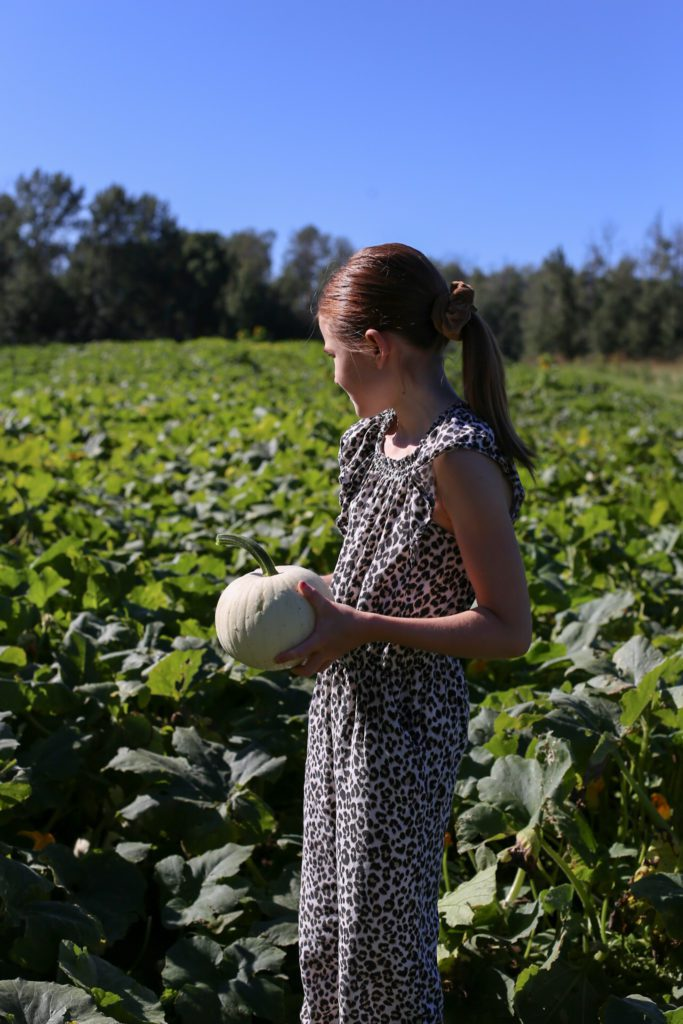 Girl in field holding pumpkin